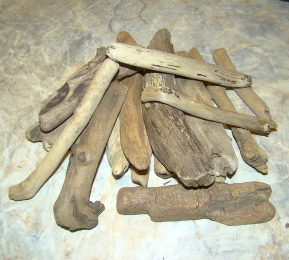 Natural Raw Driftwood of Atlantic Ocean Lot of 18 / for home decor or any project / Z76