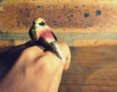 birdie ring- a cute bird in your hand