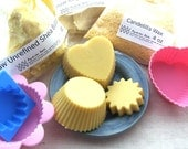 Lotion Bar Kit - Makes 12 Shea & Cocoa Butter Lotion Bars, Includes 5 Recipes - Kit - DIY Kit -  Christmas Gift for Crafter
