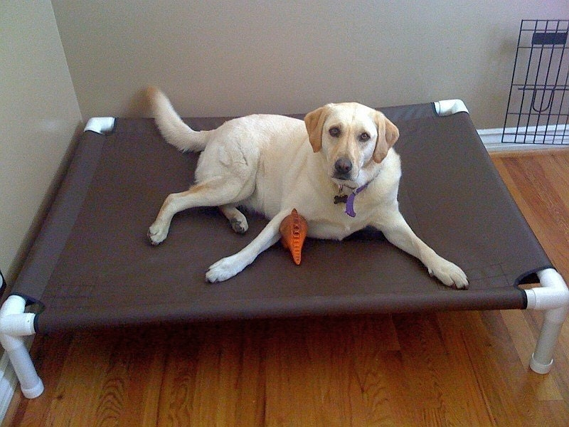 Pet Cots For Dogs