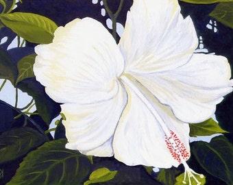 "Hawaii HIBISCUS Flower, White, Lemon Yellow & Greens Botanical 8x10"" Matted Print"