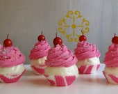 Fake Cupcakes Wild Side Insp. Collection Mini Pink Cupcakes w/ Pink Zebra Cupcake liners Set of 5 TOO CUTE Can Be Made into Ornaments