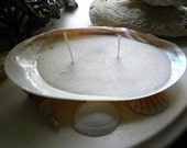 Large Soy Natural Candles Contained In A Giant River Clam    Summer Place   Beach Ocean Weddings  Martha's Vinyard