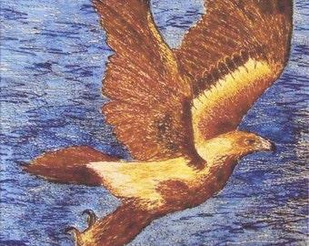 Wedge tail Eagle Australian Eagle Fabric panel