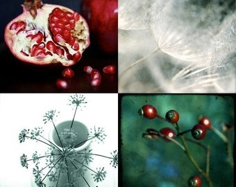Pick your faves (set of 4 holiday cards, photographic art print)
