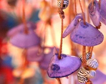 She wore shells, photographic art print 8x8,