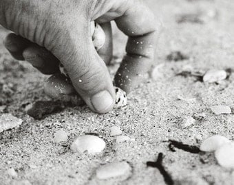 Shell collector, Fine art photograph, print 8x8