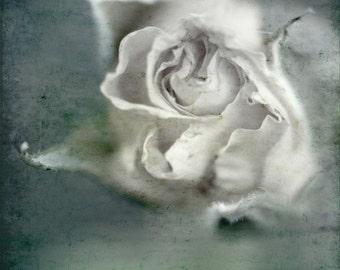 Just blue, Fine art photograph, print 8x8