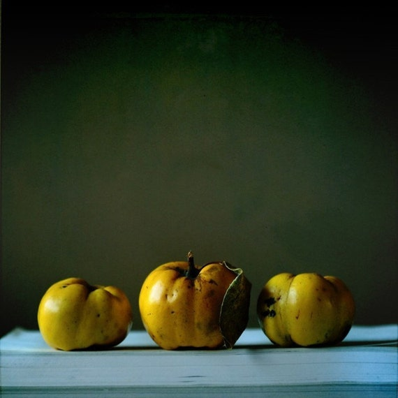 Three quince in autumn light, Fine art photograph, print 8x8