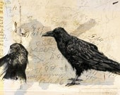 "Notes on Crows - 8""x8"" print of mixed media artwork"