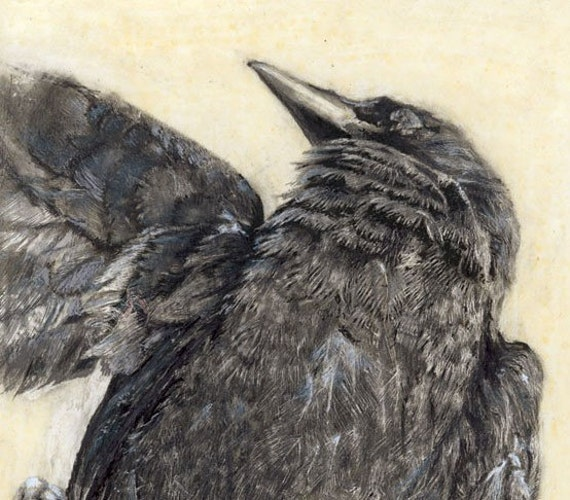 The Crow - Fine art print from original drawing on wood