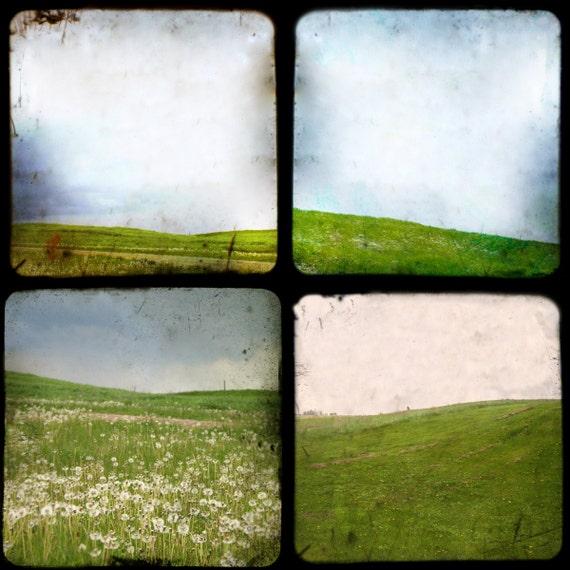 The Fields - TTV photographs SET of 4