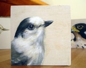 Print on Wood -  Grey Jay