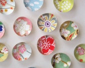 Mixed Bag - set of 8 glass magnets