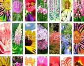 Pretty Flowers Digital Collage Sheet 23 Different 1x3 Inch Microscope Slide Images Scrapbooking