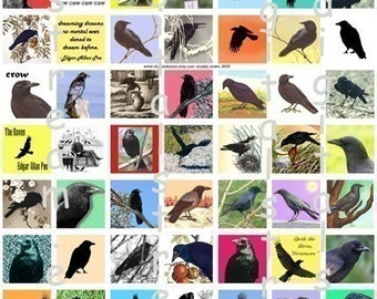 Mostly Crows Digital Collage Sheet 1x1 Inch Squares 63 Different Images Scrapbooking