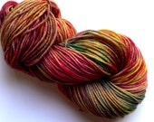 Hand dyed DK Yarn SW Merino Wool Wallflower 246 yards