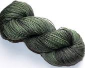 Sock Yarn Hand dyed 459 yards Superwash Merino Wool Bamboo Nylon Daryl Dixon