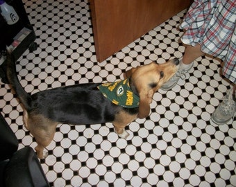 Green Bay Packer Dog Scarf, Small