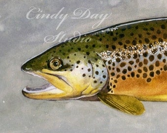 Brown Trout Watercolor Giclee Print