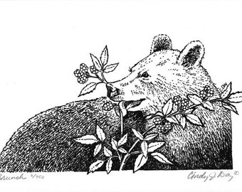 Black Bear Eating Berries Pen & Ink art,black and white animal art, bear illustration by Cindy Day
