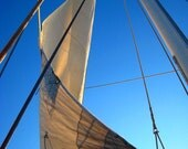 Wind in My Sail - sailing on a windy blue summer day - 8x10 Fine Art Photograph