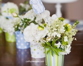 Vanessa's Baby Shower Decorations & Whimsical Vases. Polka Dots, Stripes, Paisley Vases. 12 Vases, 12 Floral Picks, Personalized Garland.