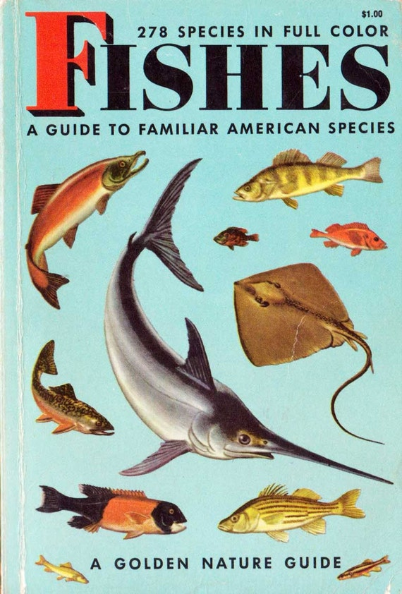 Fishes Golden Nature Guide