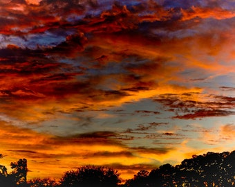 Florida Backyard Sunset Fine Art Print - Travel, Scenic, Landscape, Nature, Home Decor, Zen