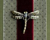 Delia the Dragonfly Large 4x6 Photo Album