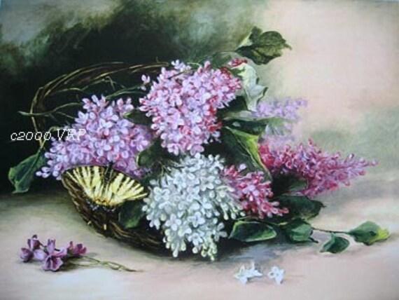 FREE SHIP Print French Lilacs C Klein
