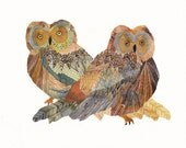 Two Saw Whet Owls - Limited Edition Print