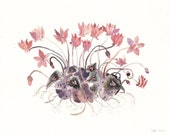 Pink Cyclamen - Limited Edition Print