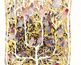Partridges in a Pear Tree - Archival Print