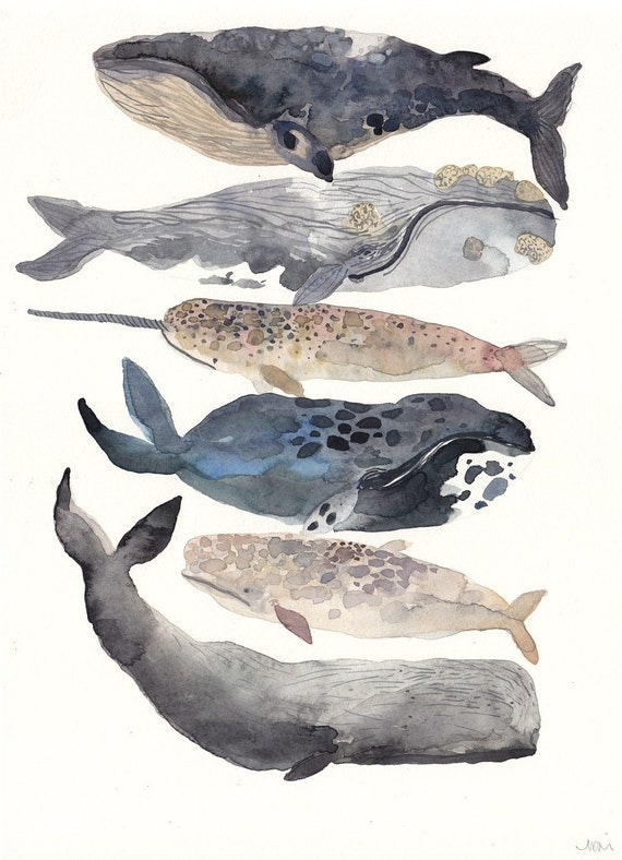 Six Whales -Original Watercolor Painting