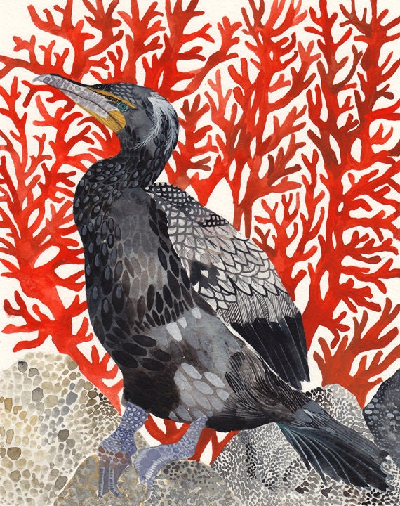 "Cormorant and Red Coral - 11"" x 14"" Archival Print"