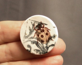 Ceramic Unique Handmade Lady Bug Button, Green White and Sepia