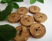 Wooden Buttons - 7  Beech Wood Tree Branch Buttons - 2 holes -1 1/2 inch 38 mm  for Knitting, Crochet, Fiber and Sewing Projects