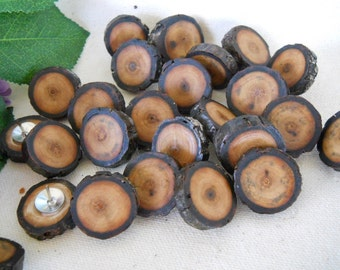 24 Wood Thumb Tacks or Push Pins made from Michigan Black Walnut Tree Branches - 3/4 - 7/8  inch -  For Bulletin Boards, Dorm Rooms