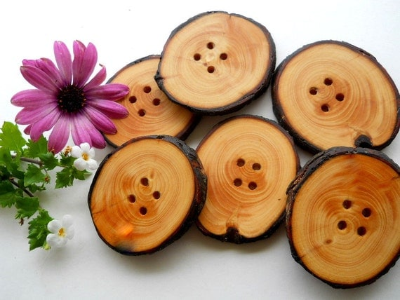 6 Wooden Buttons - White Spruce Tree Branch Buttons  - 2 x 1 3/4 inch or 51 x 44 mm - for Hats, Scarves, Cowls, Pillows, bags