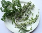 Scarborough Blend-Jar-Simon and Garfunkel made this Blend Famous-Parsley,Sage, Rosemary and Thyme
