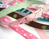 Assorted Ribbon Trim Scraps