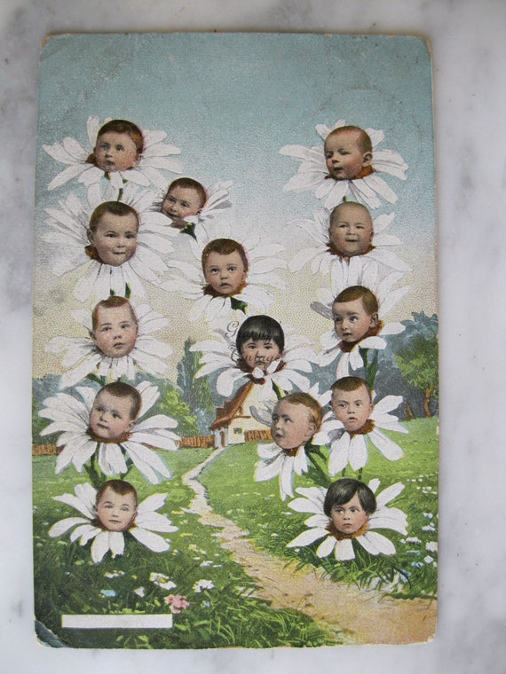 Original Antique postcard. Multiple babies. Collectors item. You must see. Early 1900