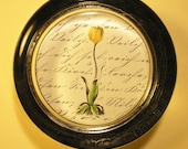 Tulip Paperweight