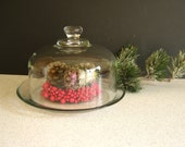 Glass Cloche Display Garden Terrarium Home Decor Knob Handle RollingHillsVintage