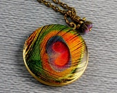 Green Wine Golden Purple Peacock Feather Locket Necklace
