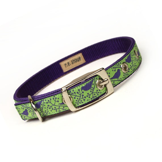 SALE - lime and purple modern birds metal buckle dog collar (1/2 inch)