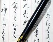 Japanese Brush fountain pen Sumi-e Calligraphy Kanji Hiragana Katakana
