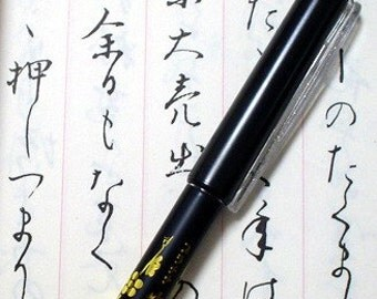 Japanese Brush fountain pen Sumi-e Calligraphy Kanji Hiragana Katakana