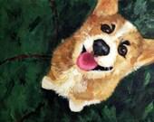 Custom Pet Portrait for aafmassey
